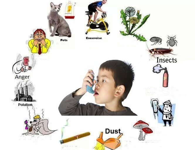asthma-causes(1)